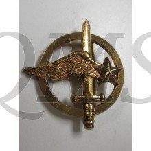 France Modern Fighter Observer Badge