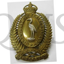 New Zealand Army 1st Canterbury Regiment