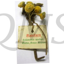 Spende abzeichen Bluhendes Kraut Rainfarn (Donation item WhW dried flower)