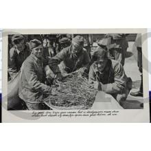 Prent briefkaart mobilisatie 1940 't is geen stroo 't zijn geen veeren, het is doogewoon maar stroo