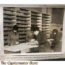 Press photo , WW1 Western front, female administrative Auxiliaries working behind front lines