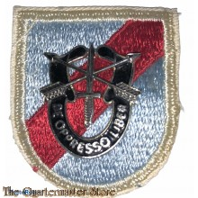 Beret flash 20th special Forces Group