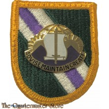 Beret flash 96 C.A.Bn (Civil Affairs Battalion)  with crest