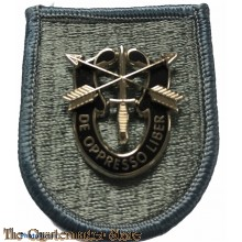 Beret flash 19th Special Forces Group with SF crest