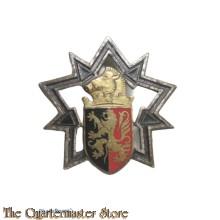 Badge France 3° RG Régiment du Génie Charleville Mézières (Ardennes)