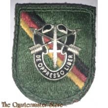 Beret flash 10 Special Forces Detachment Europa