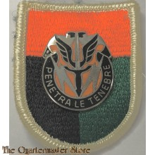 Beret flash 112 Signals Battalion with crest