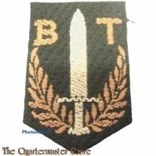 Mouwschild Bewakingstroepen bij de 2e Divisie (stof)