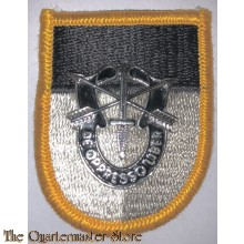 Beret flash Special warfare training group