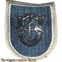 Beret flash 19 Special Forces Group (old)
