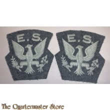 Shoulder patches  US  Eagle 121 Squadron