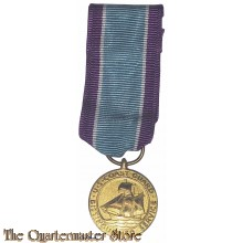 Miniature Medal Coast Guard Distinguished Service
