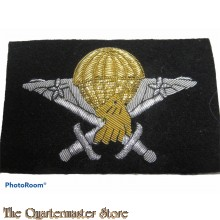 Cameroon - Airborne Basic Parachutist Wings Badge