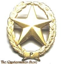 Brevet PISTOOL Nederlands leger ( Dutch pistol sharpshooter badge)