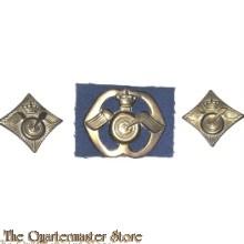 Baret embleem en schouder Regiment Aan en Afvoertroepen (oud)