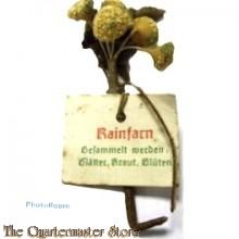 Spende abzeichen Blatter Krauter Bluten Rainfarn (Donation item WhW dried flower)