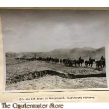 Press photo , front of Mesopotamia, reenforcments on their way