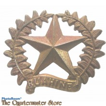 Cap badge  New Zealand Army 17th Ruahine Regiment