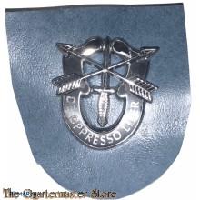 Beret flash 19 Special Forces Group (variation)