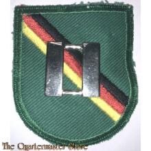 Beret flash Special Forces Detachment Europe Captain