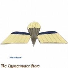Koninklijke Luchtmacht Klu parawing