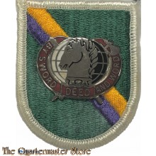 Beret flash Reserve special operations command  with crest