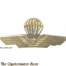Italy - Parachutist Qualification Badge 1960s