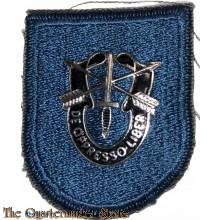Beret flash Reserve Components Special Forces