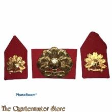 Baret embleem en kraag Regiment Infanterie Oranje Gelderland