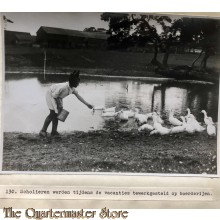Press photo , WW1 Western front , Scholars work during holidays on farms