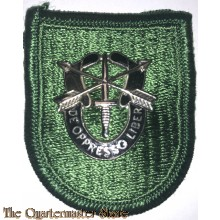 Beret flash 10 Special Forces Group