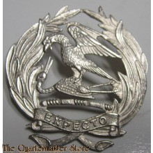 South Africa Cap badge First City Reserve Regiment