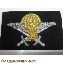Cameroon Airborne Basic Parachutist Wings Badge