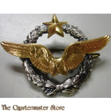 Badge Air Force Pilot Wings  DRAGO