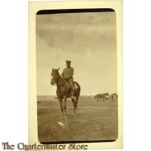 Photo 1917 Kavaleristen mit Pferd im Felde