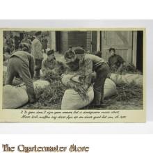 Prent briefkaart mobilisatie 1940 Stroo zoo