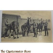 Prent briefkaart mobilisatie 1939 Paard Kameraad