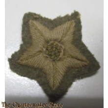 Trade badge Driver WW2
