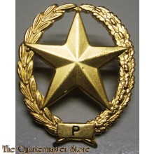 Brevet PISTOOL Nederlands leger - PM - Dutch pistol sharpshooter badge