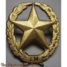 Brevet LICHT MACHINEGEWEER Nederlands leger - PM - Dutch Light Machinegun sharpshooter badge